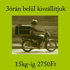 Motoros futár szolgáltatás